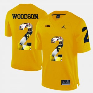 Player Pictorial Yellow Charles Woodson Michigan Jersey For Men #2 523086-952